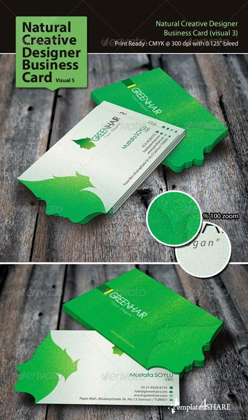GraphicRiver Natural Creative Designer Business Card (Visual 5)