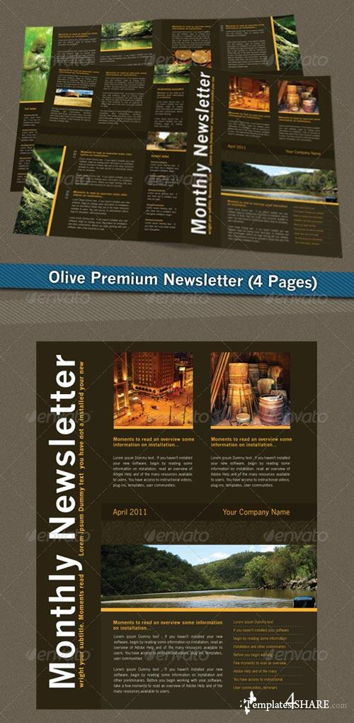 GraphicRiver Olive Premium Newsletter