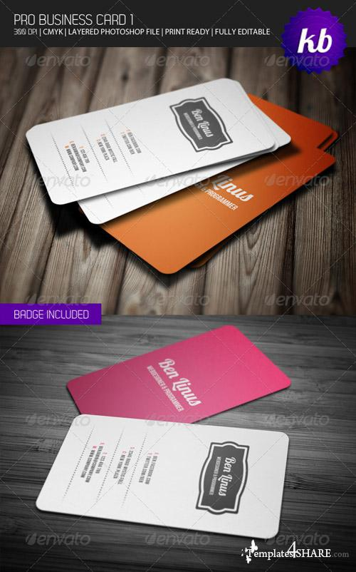 GraphicRiver Pro Business Card 1