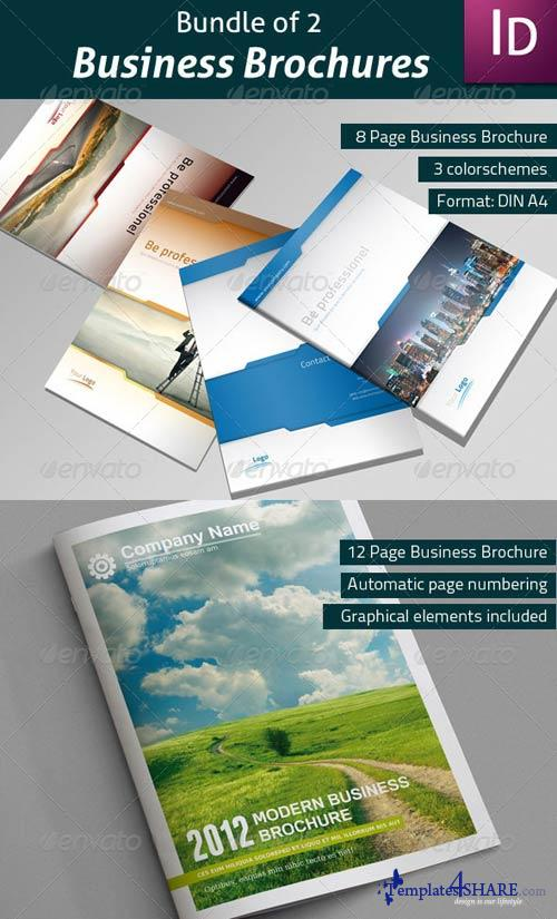 GraphicRiver Bundle of 2 Business Brochures