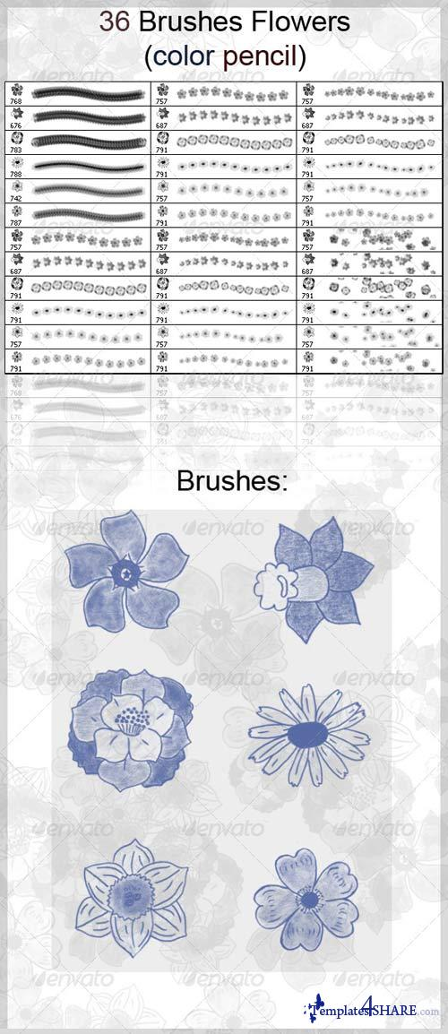 GraphicRiver 36 Brushes Flowers (Color Pencil)