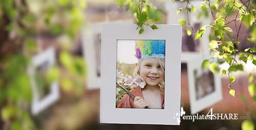 Photo Gallery on a Sunny Afternoon - After Effects Project (Videohive)