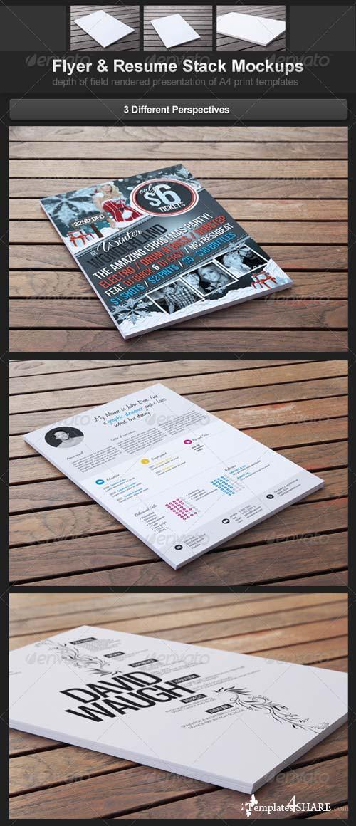 GraphicRiver Flyer & Resume Stack Mockups