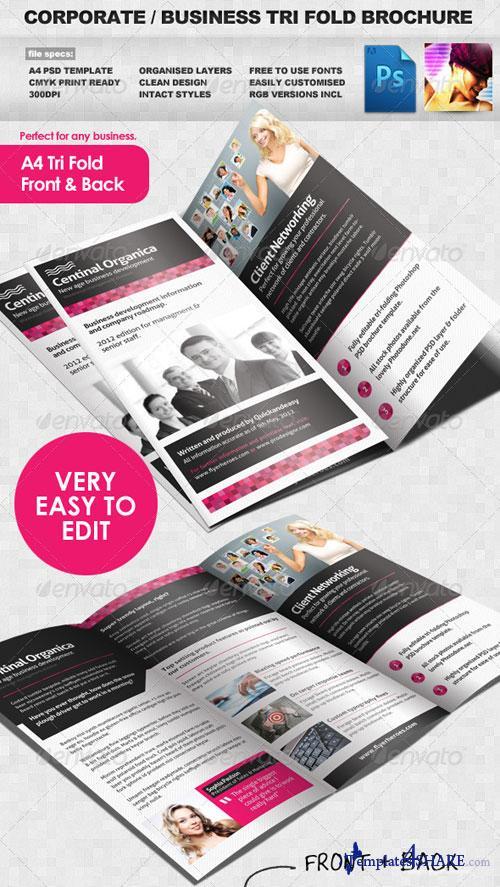 GraphicRiver Corporate / Business Tri Fold Brochure