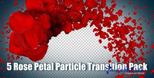 5 Rose Petal Particle Transition Pack - After Effects Motion Graphics (Videohive)