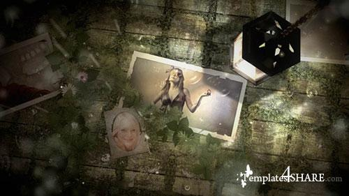 Light Photo Gallery - After Effects Project (Videohive)