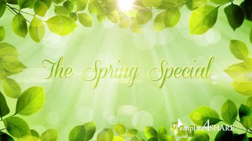 The Spring Special - Promo Pack - After Effects Project (Videohive)