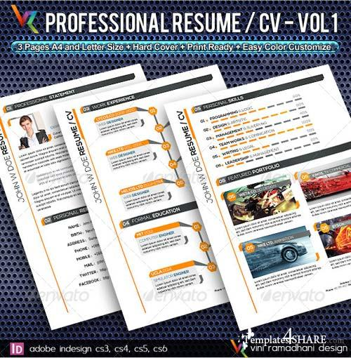 GraphicRiver Professional Resume