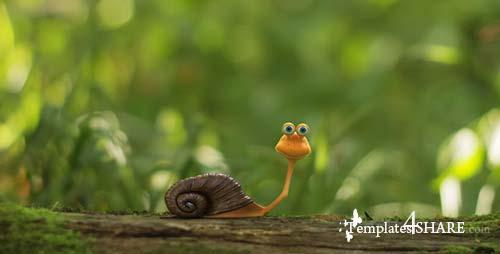 The Snail Logo Opener - After Effects Project (Videohive)