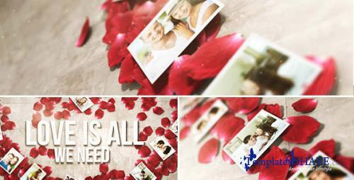 Rose Petals Heart - Photo Gallery - After Effects Project (Videohive)