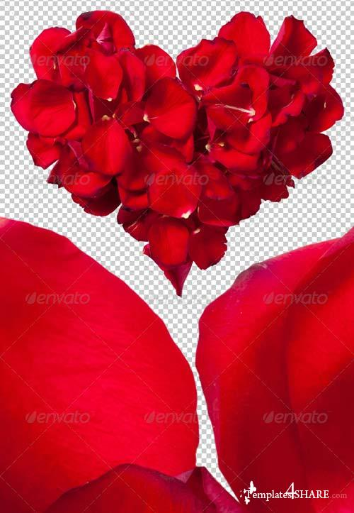 GraphicRiver Red Rose Petals Heart Photo-realistic