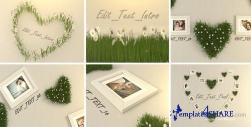 Valentine Photo - After Effects Project (Videohive)