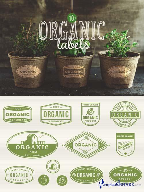 CreativeMarket 10+ Organic Labels
