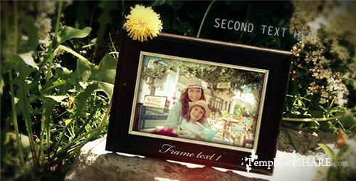 Nature Photo Gallery - After Effects Project (Videohive)