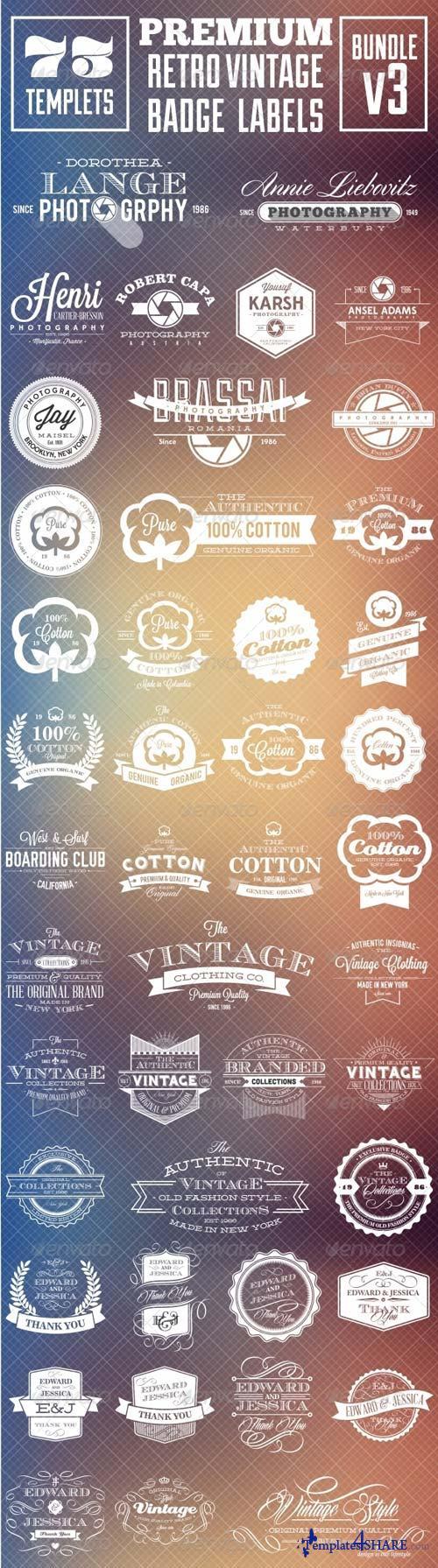 GraphicRiver Premium Retro Vintage Badge Labels Bundle v3