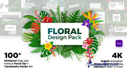 Floral Design Pack - After Effects Project (Videohive)